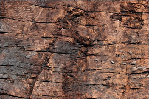 Damaged Wood Texture