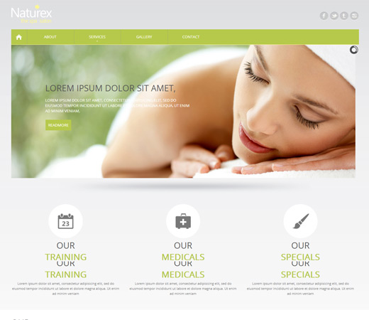 Naturex Spa Responsive  Website Template