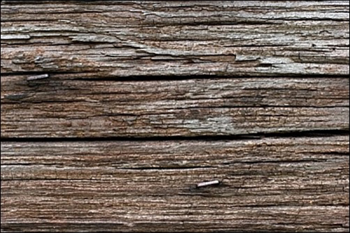 Rough Wood Texture