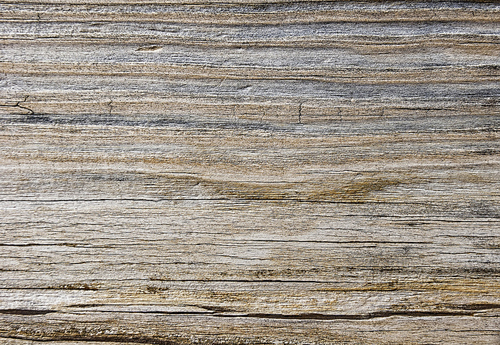 Weathered Wood Texture 2