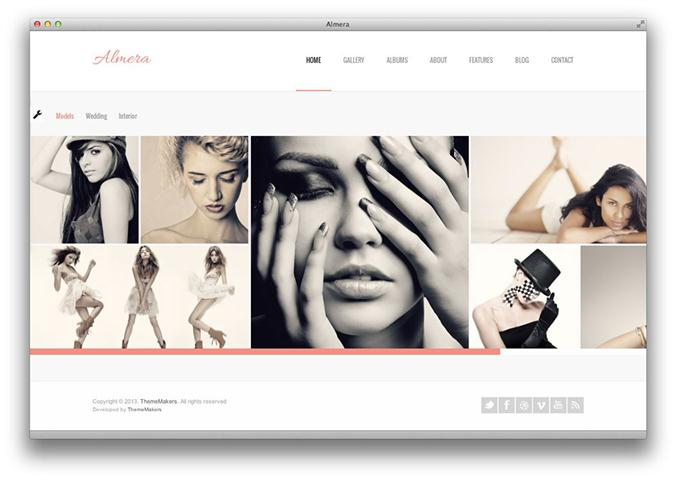 Almera Responsive Portfolio WordPress Theme (Small)