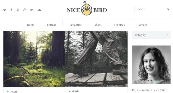 NiceBird- WordPress Blog Themes for Blog Newspaper