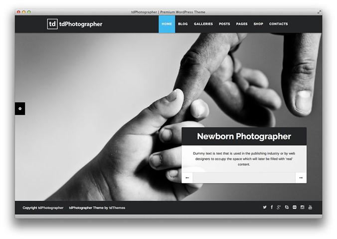 tdPhotographer – WordPress Theme (Small)