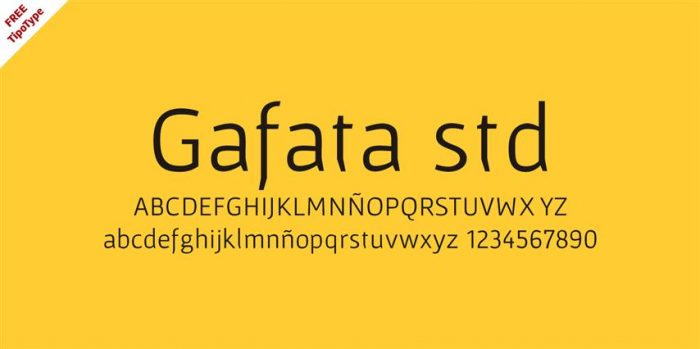 Gafata std (Small)