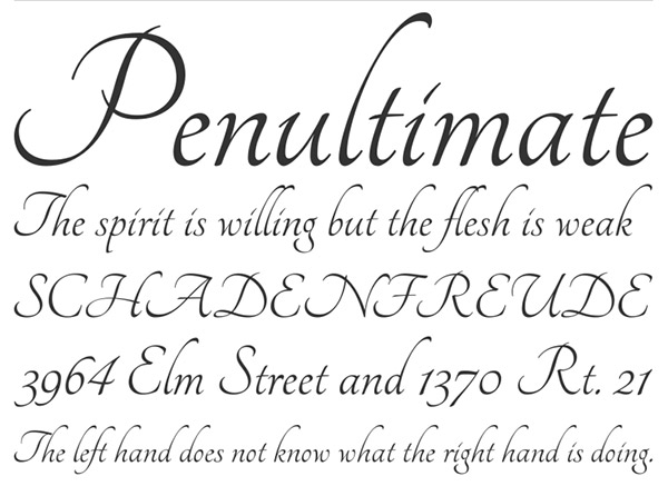 45+ Best Calligraphy Fonts for Designers - TechClient