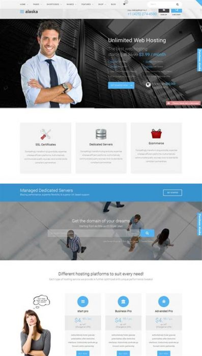 Alaska - SEO WHMCS Hosting, Shop, Business Theme (Custom)