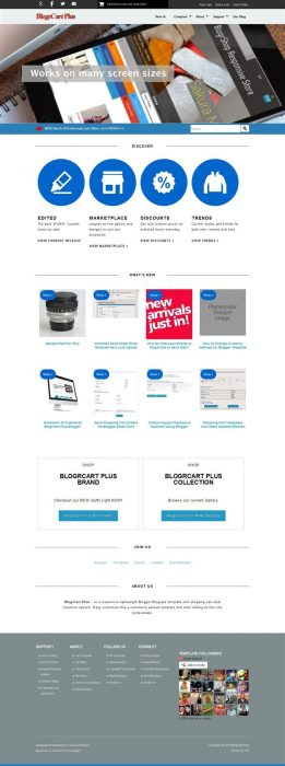 Blogr Cart Plus E commerce Theme (Custom)