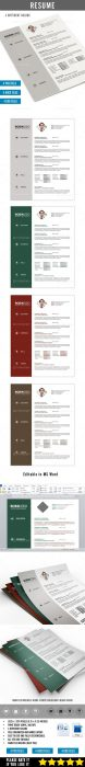 Clean Resume PSD  MS Word (Custom)
