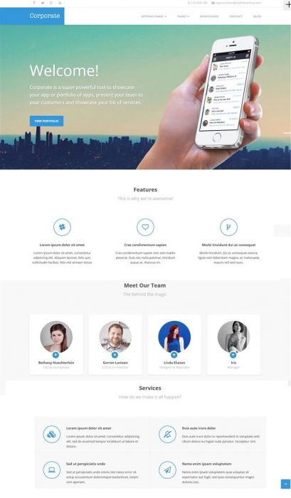 Corporate Ultimate Business Solution WordPress Theme (Custom)