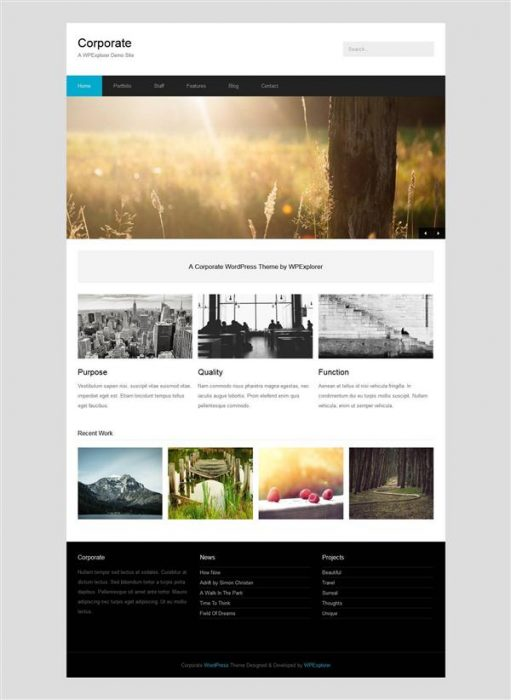 Corporate the Best WordPress Theme (Custom)