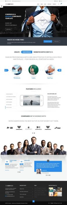 Corpress - Business and Infographics WP Theme (Custom)