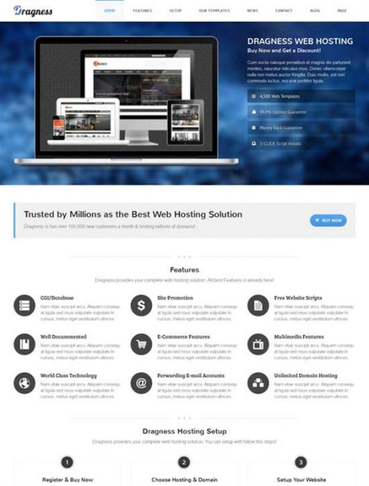Dragness - Premium WordPress Landing Page (Custom)