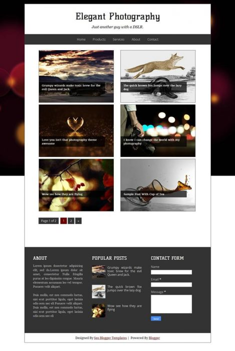Elegant Photography Blogger Template (Custom)