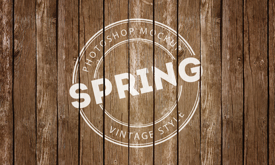 Free Spring Vintage Logo Mock-Up