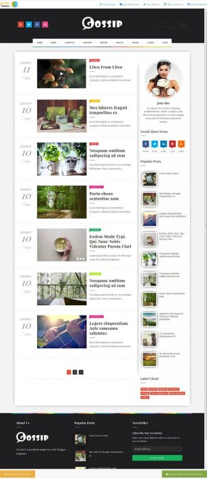 Gossip Photography Blogger Template (Custom)