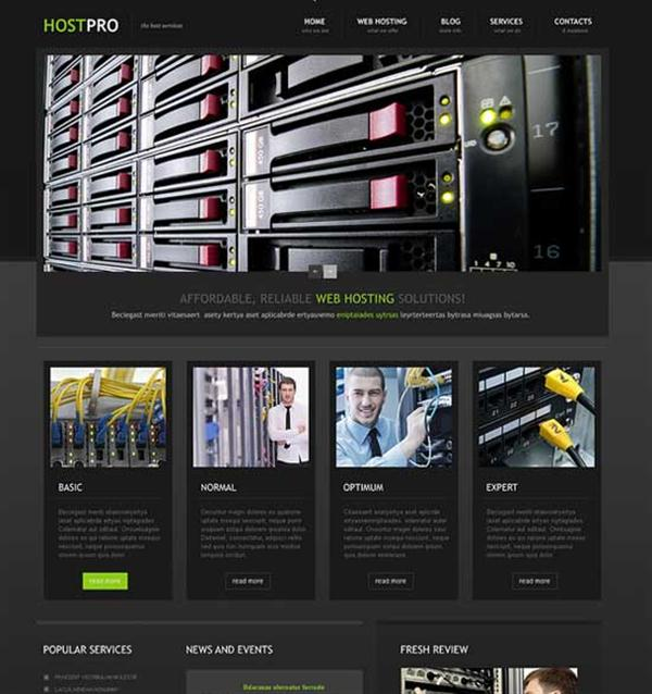 HOSTPRO Hosting Responsive WordPress Theme (Custom)