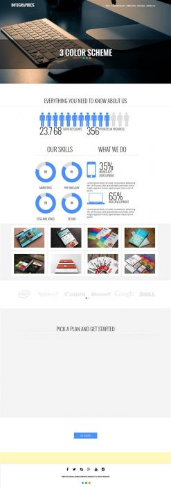 Infographics - WP Business Theme (Custom)