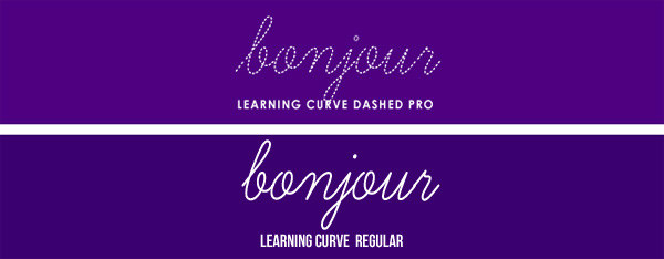Learning Curve BV by Blue Vinyl