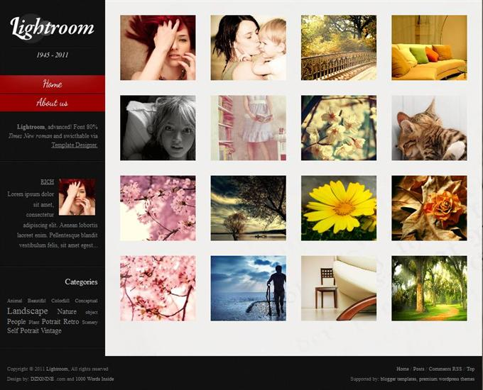 Lightroom Advanced Photography Free Blogger Template (Custom)