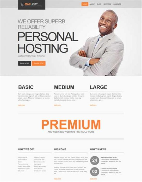 MAXHOST - WordPress Theme (Custom)