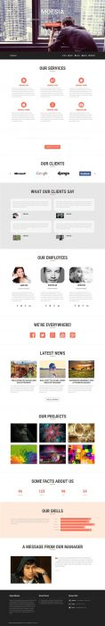 Moesia Business Theme