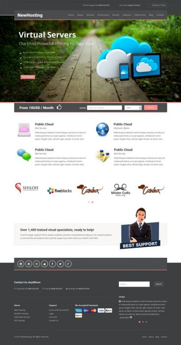 Newhost Hosting WordPress Theme with WHMCS  (Custom)