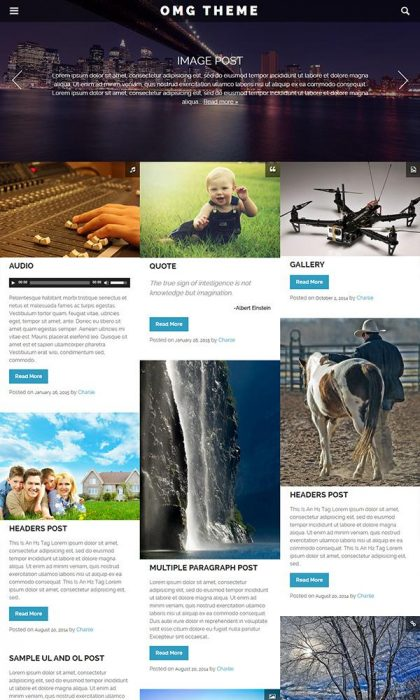 OMG Free Responsive WordPress Theme (Custom)