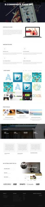 Optimus - Multi-Concept WordPress Theme (Custom)