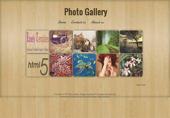 Photo Gallery Photography Blogger Template (Custom)