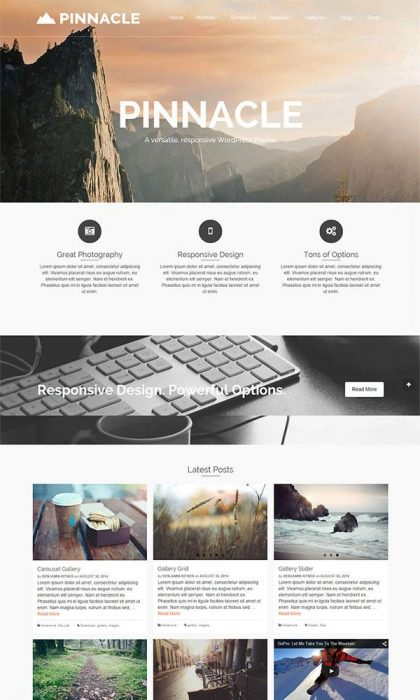 Pinnacle Free WordPress Theme (Custom)