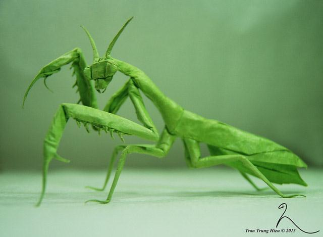 Praying mantis (Custom)