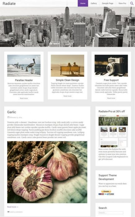 Radiate WordPress Theme (Custom)