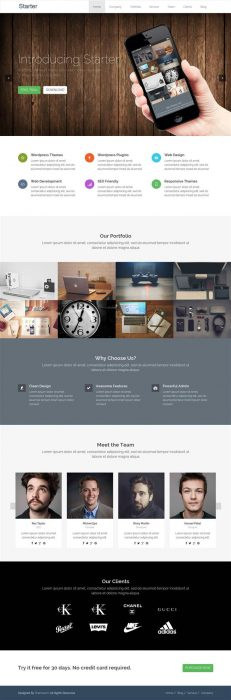 Starter – Responsive WordPress Onepage Theme (Custom)
