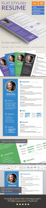 Stylish Flat Resume (Custom)