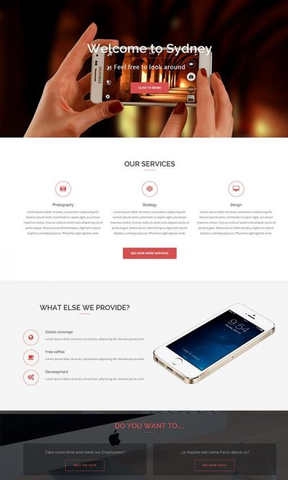 Sydney WordPress Theme (Custom)