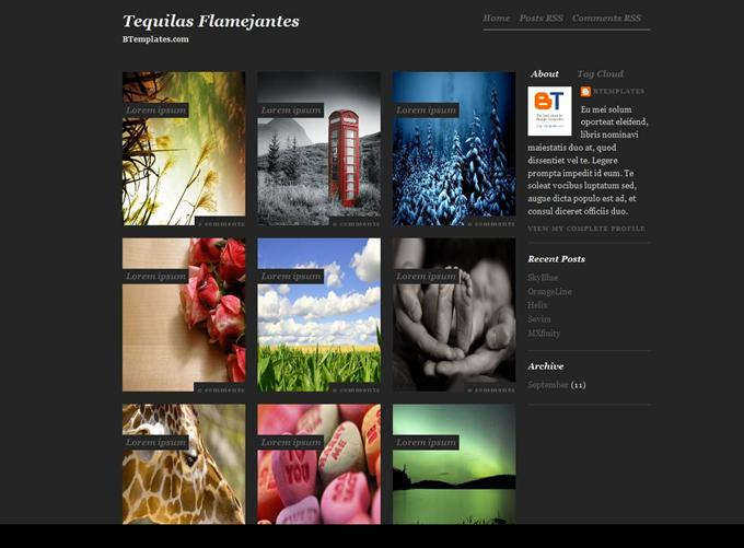 Tequilas Blogger Template (Custom)