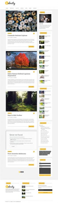 Velocity Blogger Template (Custom)