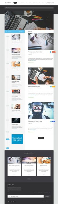 Voltov - Blog and Magazine WordPress Theme (Custom)