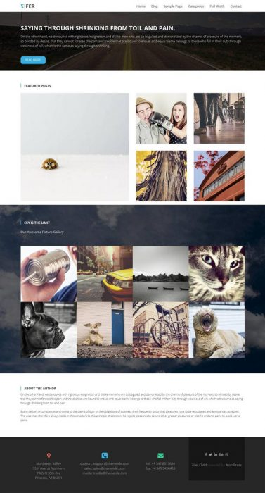 Zifer Child - Free Portfolio Gallery WordPress Theme (Custom)