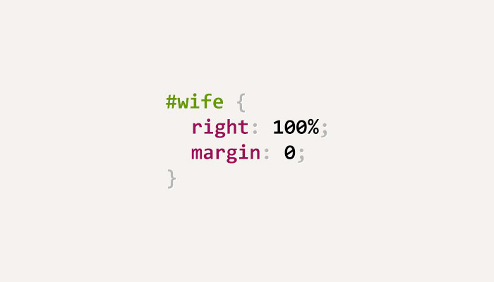 css-puns-wife