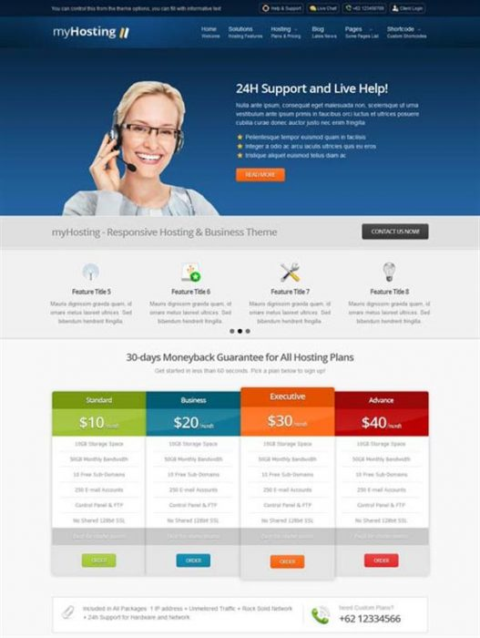 myHosting - Responsive Hosting & Business Theme (Custom)